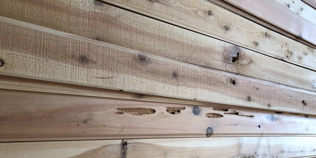 Cedar Siding Prices