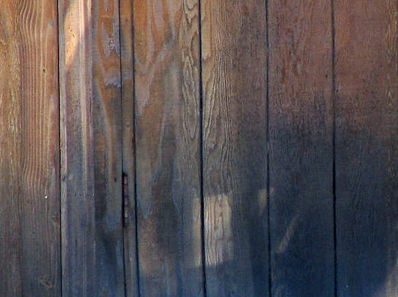 Black Mold On Western Red Cedar Siding