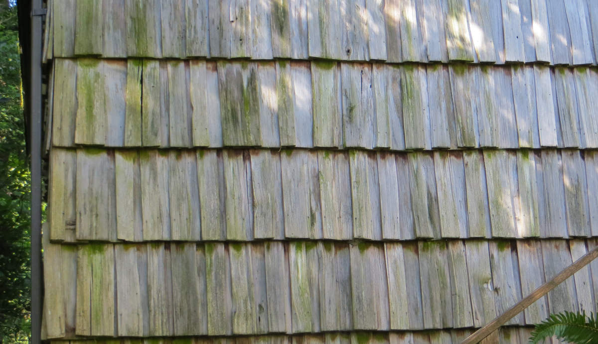 Wood Shingle Siding Cost Gallery Of Most Popular Types Of